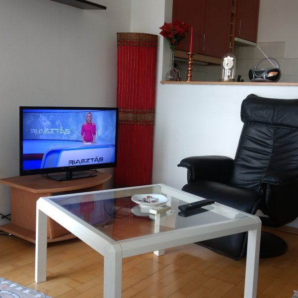 riverside-apartman-lakas-kiado-par-orara-buvohely-budapest-viza-utca-02