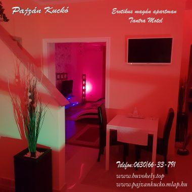 pajzan-kucko-budapest-buvohely-03